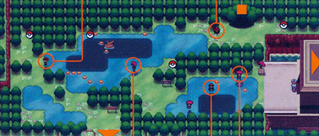 File:Unova Route 8.png