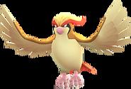 Pidgeot-GO
