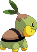 387Turtwig DP anime 4