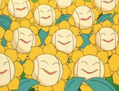 File:Multiple Sunflora anime.png