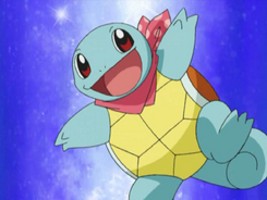 Team Go-Getters Squirtle