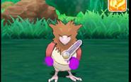 Pokemon Refresh 2