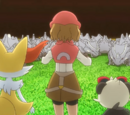 XY109: Master Class Choices!