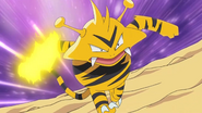 Paul Electabuzz Thunder Punch
