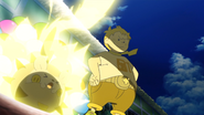 Sophocles Togedemaru Lightning Rod