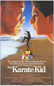 Pooh's Adventures of The Karate Kid Poster