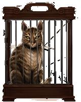 Tabby-cat-lrg