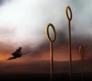 Gryffindor Versus Ravenclaw