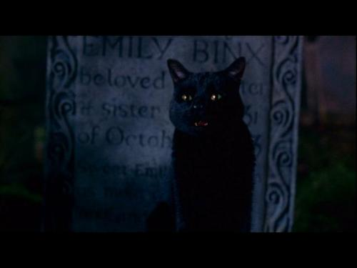 File:Thackery-binx.jpg