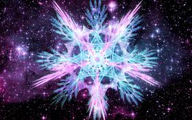 45800 chronamut cosmic-star-flower