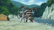 Sugata bear fighting