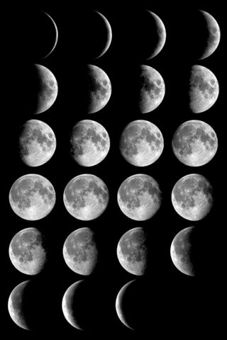 File:Moon phases.jpg