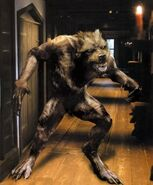 The Host werewolf form