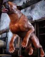 NPC-DogLeaping