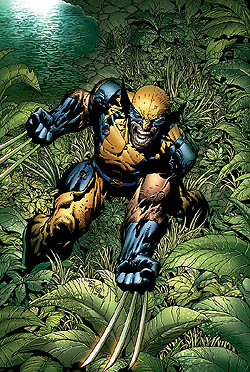 File:Wolverine (Marvel).jpg