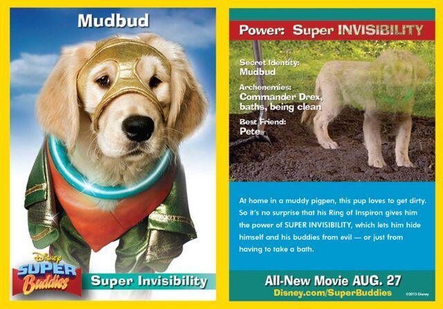 File:Mubbud Card.jpg