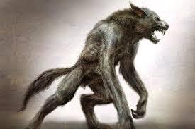 File:Wolfdude.png