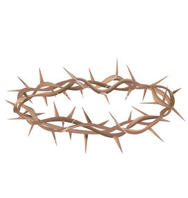 Crown-of-thorns-vector-25735