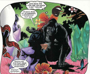 Weeping-Gorilla-Promethea-3