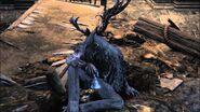 Brador Bloodborne