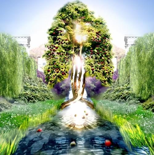Divine plant manipulation superpower wiki fandom powered by wikia River flowing from the garden of eden