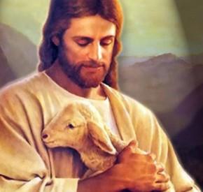 File:Lamb of Salvation.jpg