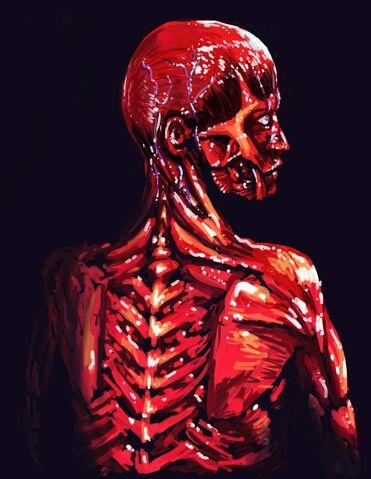 File:Skinless.jpg
