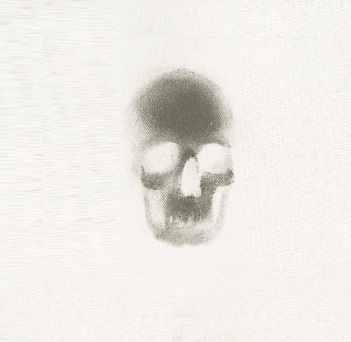 File:Skull-3 White.png