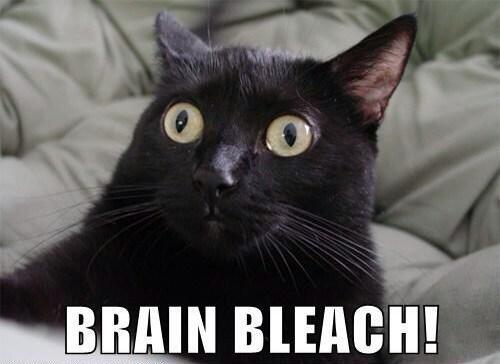 File:Brain Bleach.jpg