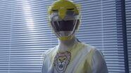 Legend Shift Yellow Lion