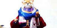 Master Sha-Fu