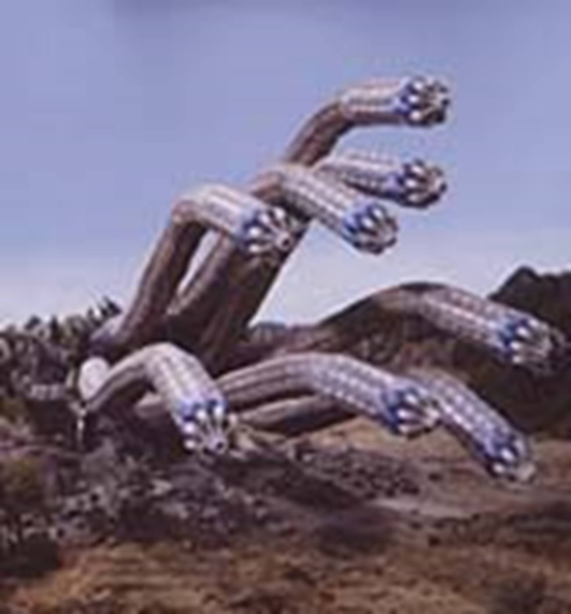 File:Prmf-Hydra Worm.jpg