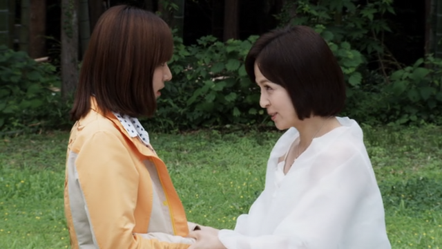File:Gosei25.png