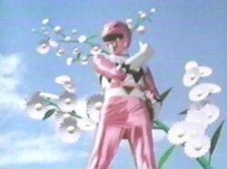 LG Pink Ranger