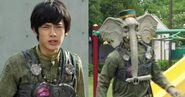 Fake Tusk Elephant