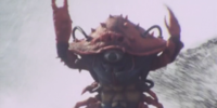 Crab Evo