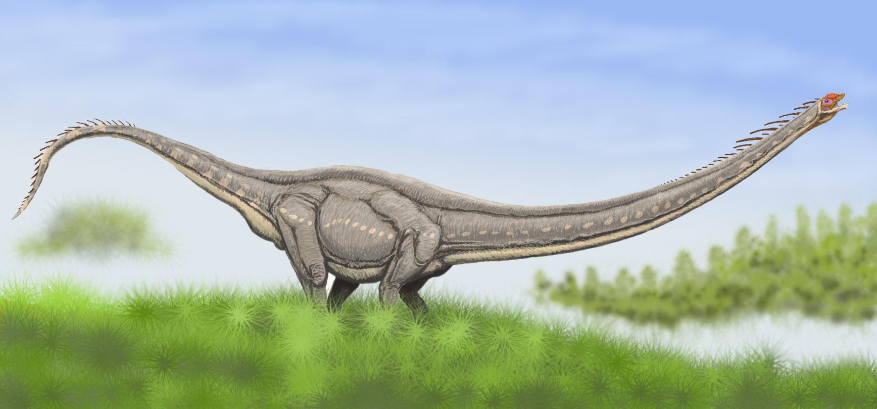 Zigongosaurus   Prehistoric Earth Wiki   FANDOM powered by ...