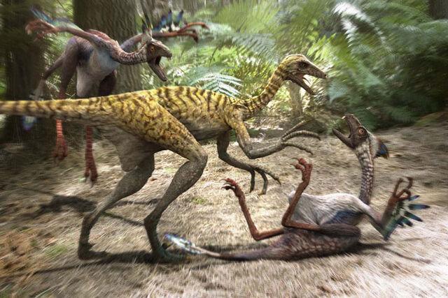 File:Mei Long attacks Incisivosaurus.jpg