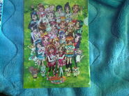 Pretty Cure File