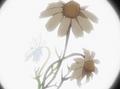 HPC23.Flower