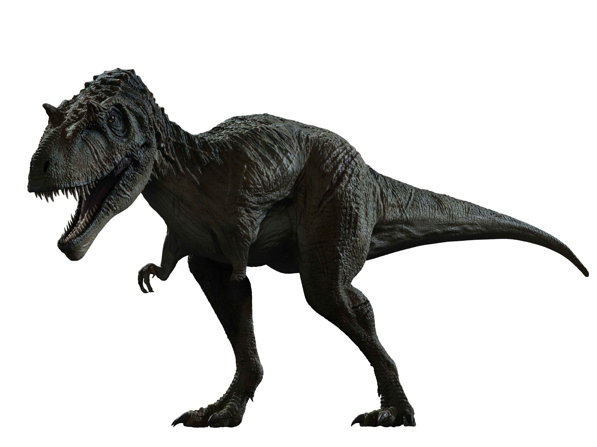 Primeval New World Albertosaurus Albertosaurus (PC) | P...
