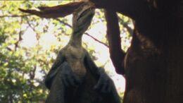 1x5 AnurognathusInTree