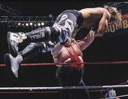 Royal Rumble 1996.5