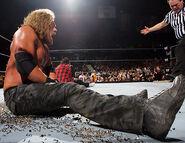 WrestleMania 22.21