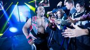 WWE World Tour 2014 - London.6