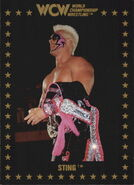 1991 WCW Collectible Trading Cards (Championship Marketing) Sting 1