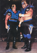 Roadwarriors wcw 1996