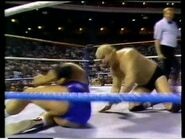 Wrestlefest 1988.00046