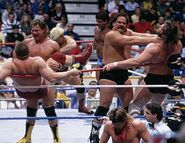 Royal Rumble 1988.6