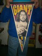 NWO The Giant Pennant